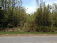 12 Acre Building Lot for Sale in Upper Falmouth