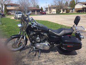 Custom Harley Davidson 1200 Sportster
