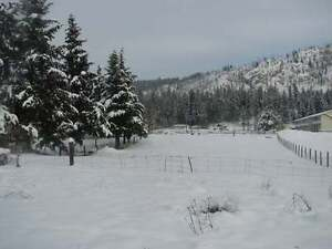 Excellent Hwy Frontage in Barriere, 1.75 Acre, Fully Usable
