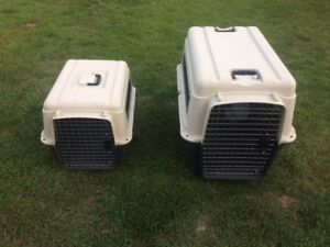 Xlarge and Medium dog carriers for sale plus free collars!