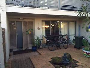 A new family member wanted in a great and happy house. Fitzroy North Yarra Area Preview