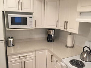 Furnished 2 Bedroom Modern Suite - Daily/Weekly/Monthly North Shore Greater Vancouver Area image 5