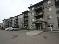main floor 2 bedroom 804 square foot condo minutes from shopping