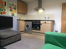 Nice One Bed flat Fully Furnished FREE WI FI Safe Clean Modern