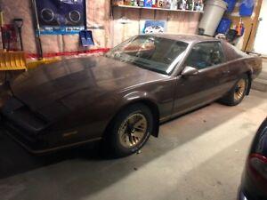 1987 Pontiac Firebird (needs to be restored)