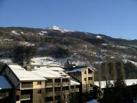 Duplex Winter Ski Apartment in Bourg Saint Maurice, French Alps - less than 5 min walk to Funicular
