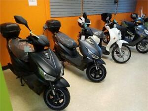 Electric Scooter Gio Falcon 800 Watt on  Christmas Sale !!!