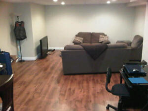 Country Basement 1 Bed Apartment - Large, recently renovated