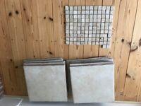 Bathroom floor/wall tiles