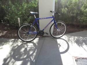 Perfect commuter bike, Shogun Trail Breaker SP (excellent cond)