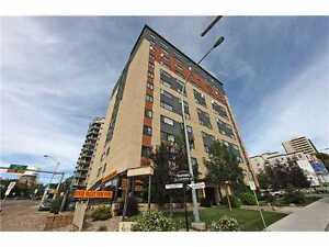 All Inclusive River Valley Condo near U of A and Downtown