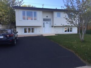 3 bedrm main level for rent: 178 Canada Drive