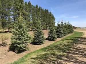 5.19 acres of prime land all contoured