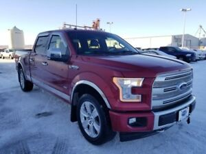 2017 Ford F-150 Platinum (Heated/Cooled Seats, Remote Start, Pus