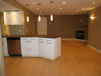 Beautiful, newly developed 2 bedroom basement suite - July 1
