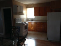 3 bedroom apartment recently renovated available march 1st