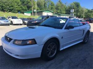2004 Ford Mustang  3.9 L / 210 HP