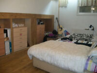 Large two bedroomed lower ground floor apartment. Newly painted. Biggest deal of 2018!