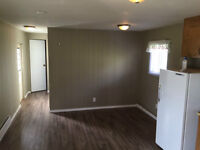 1 Bedroom Renovated Mobile Trailer on acreage: Available now