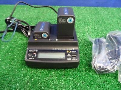 Зарядное устройство Sony AC-SQ950 Dual M