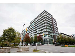 Gorgeous  2 bed condo in Olympic Village