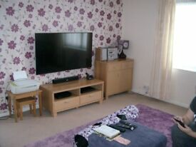 Looking to exchange my one bedroom flat in Hilsea for a two bedroom