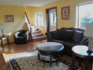 Fully Furnished 1 Bedroom Walk Out Suite
