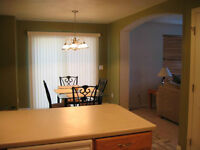 Quick and Professional Painter for your House or Condo!