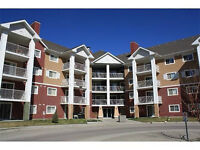 Available Immediately! One Bedroom Condo In McKenzie Towne