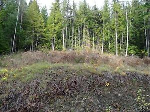 Gently sloping large building lot
