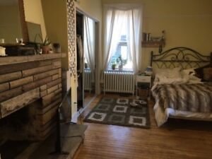 BRIGHT, SPACIOUS SUITE in SOUTH END FEMALE FLAT near DAL/SMU/IWK