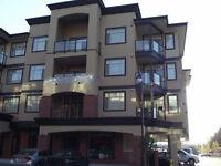 Upscale 2 bedroom 2 bath condo on the top floor across from TRU!