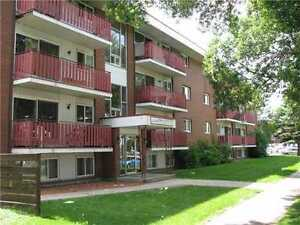 Beautiful Updated Condo in Great Whyte Ave Location