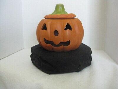 Halloween Pumpkins Ideas Decorating (Terra Cotta Pumpkin ~ Fall/Halloween Decorations ~ Gift)