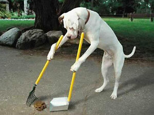 THE POOP PICKER-UPPER. Low price but Quality work.