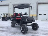 EZGO TXT Custom Electric St. Catharines Ontario Preview