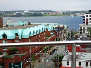 15-149 Downtown Condo, top quality building (Morris St Halifax)