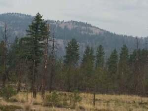 76 Acres of land for sale in Merritt