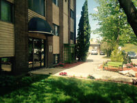 Spacious 1 Bedroom Suites-Great Location 906 Duchess st
