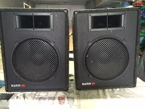 SPEAKERS - DD - MUSIC 2 X 15 WITH HORN  - 250 WATT POWER AMP