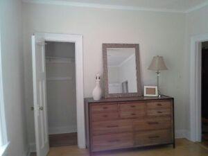FULLY FURNISHED  amazing   open concept condo/ in suite laundry Regina Regina Area image 3