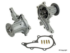 87 Toyota Corolla Water Pump besides Exocet Miata Kit Car moreover Cav Diesel Injection Pump Diagram as well Renault Megane Scenic together with 2002 Jaguar X Type Water Pump Pulley. on water pump pulley engine car parts