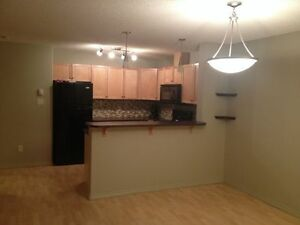 2bed/2bath apartment immediately available for rent Edmonton Edmonton Area image 1