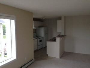 *Corner Unit, in suite laundry, tons of natural light, for NOW!