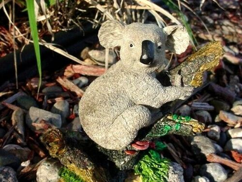 koala bear from  Australia Wildlife ~  ~ Figurine, Statue