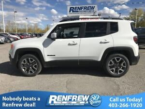 2017 Jeep Renegade 4WD 4dr Altitude