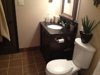 Kitchen,Basement,Bathr. Renovations FREE ESTIMATES