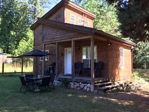 Mountain View Kootenay Cabin close to Nelson sleeps 4-pets ok