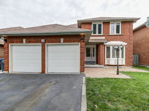 Renovated 4+3 Bed Detached House, 5 bath - Steels/Chinguacousy