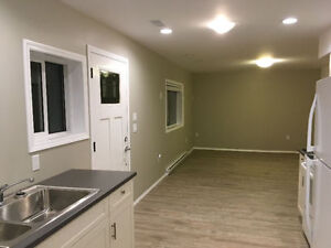 1bdrm above ground basement suite rental in Salmon Arm